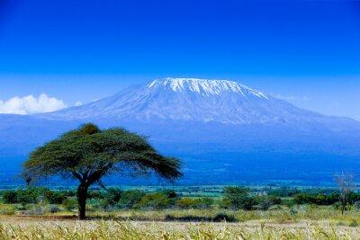 Kilimanjaro paisaje