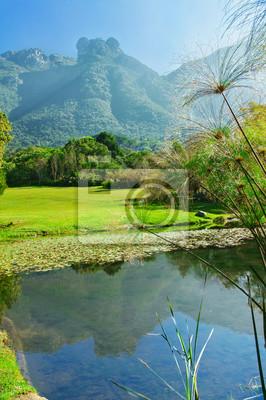 Kirstenbosch botanical gardens, Ciudad del Cabo, Sudáfrica