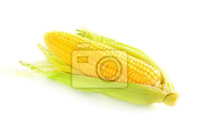 La mazorca de maíz