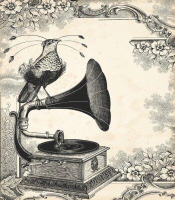 Póster La música de aves