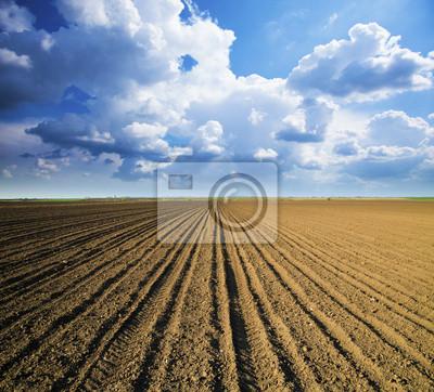 La tierra cultivable en el cielo azul