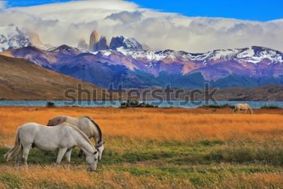 Póster Lago Laguna Azul en las montañas. En la orilla del lago pastando caballos. Impresionante paisaje en el parque nacional Torres del Paine, Chile.