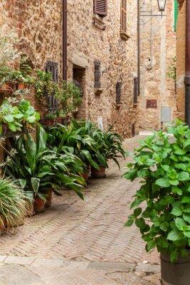 Póster Las calles de la antigua ciudad italiana de Pienza, Toscana