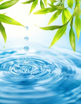 Las gotas de agua folling de una hoja de bambú