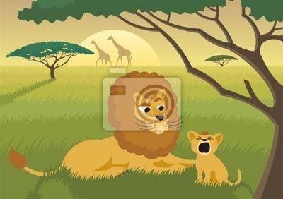 Leones en el Wild