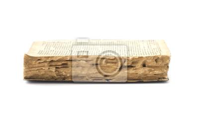 Libro antiguo arruinado por las termitas