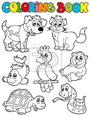 Libro Para Colorear Con Los Animales Domésticos 2 Carteles Para La