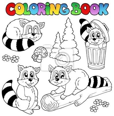Libro para colorear con los mapaches lindos carteles para la pared ...