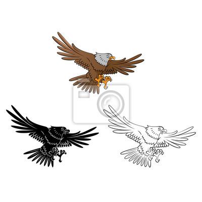 Libro para colorear dibujos animados águila carteles para la pared ...