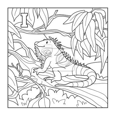 Libro para colorear (iguana), ilustración incolora (letra i ...
