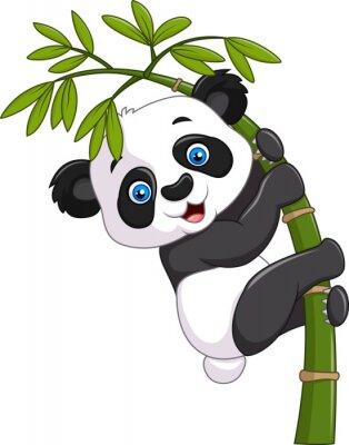 Póster Linda panda bebé divertido colgando de un árbol de bambú