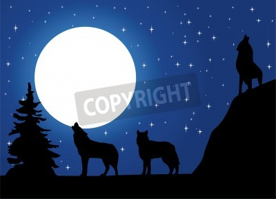 Lobos Aullando A La Luna Carteles Para La Pared Pósters Aullido