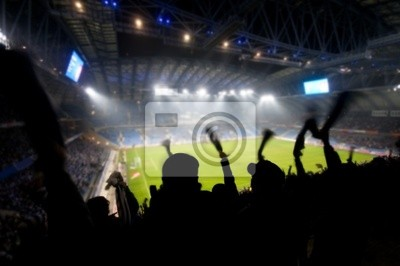 Los fans celebrando un gol en el partido de fútbol / soccer