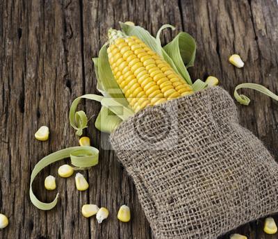 Los granos de maíz en una mazorca y saco