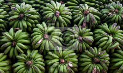 Los racimos de plátanos. Uganda.