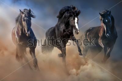 Póster Los sementales negros corren al galope en el polvo del desierto contra el cielo dramático