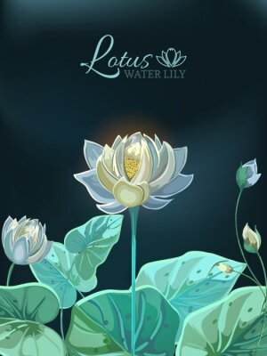 Póster Lotus flower with green leaves close-up in hand drawn style