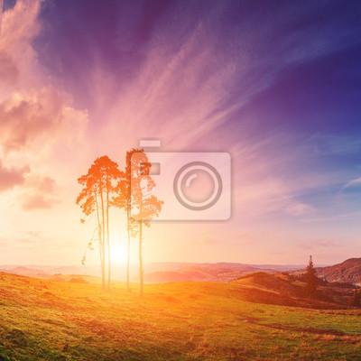 Luz solar brillante