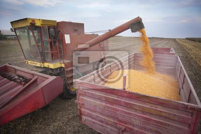 Maíz descarga Harvester