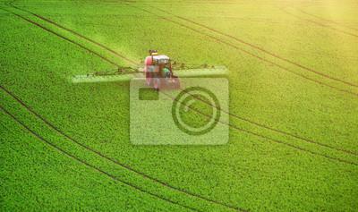 Maquinaria agrícola que rocía el insecticida al campo verde, fondo estacional natural agrícola de la primavera