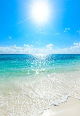 Póster Mar tropical