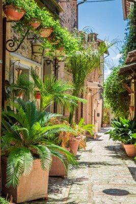 Póster Maravillosa calle decorada en pequeña ciudad en Italia, Umbría