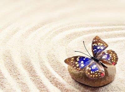 Póster Mariposa en la arena