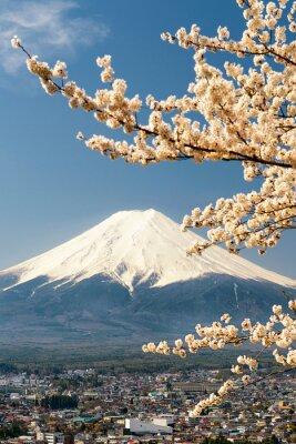 Póster Monte Fuji con ramas de cerezo, Japón
