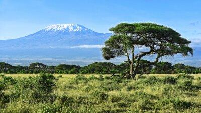Póster Monte Kilimanjaro en Kenia