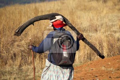 Mujer de edad avanzada que lleva una rama grande en la cabeza