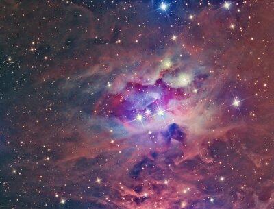 Póster NGC 1973 Hombre corriente Nebulosa imaginada con un telescopio y una cámara CCD científica