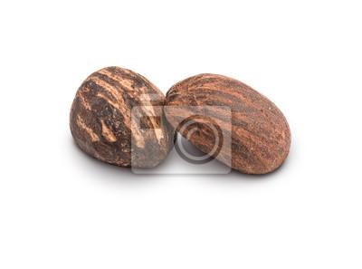 Nueces de mantequilla de karité en blanco