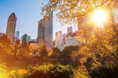 Póster Nueva York Central Park