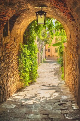 Póster Old streets of greenery a medieval Tuscan town.
