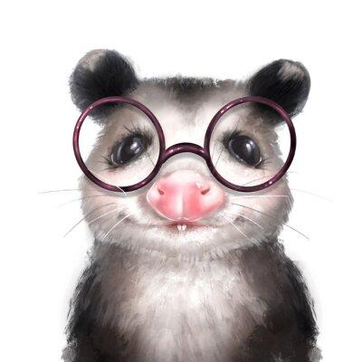 Póster Opossum illustration. Cute animal portrait isolated on white