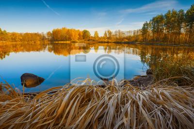 Otoño colorido bosque en el lago