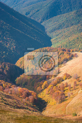 Otoño valle de los Cárpatos