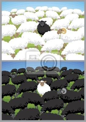 Ovejas Negro