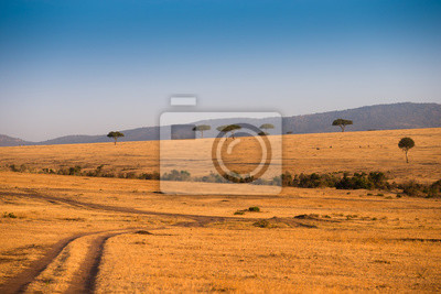Paisaje africano en el Parque Nacional Masai Mara Kenia