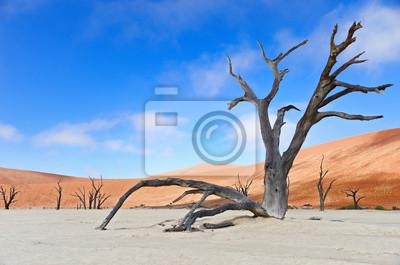 Paisaje de Dead Vlei, Sossusvlei, Namibia, África del Sur
