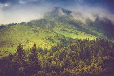 Póster Paisaje de montaña y bosques tapados cubiertos de niebla. Cielo nublado dramático.