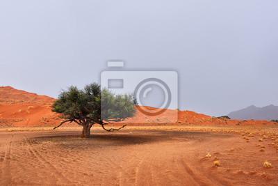 Paisaje del desierto de Namib, Namibia