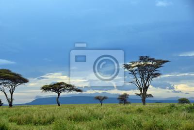 Paisaje del parque nacional de Serengeti, Tanzania, África