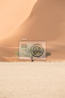 Paisaje en Sossusvlei, Namibia.