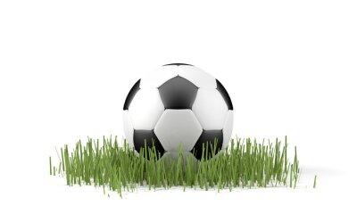 Póster Palla da calcio do erba