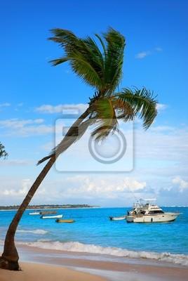 Palmera y exótica playa en República Dominicana, Punta Cana