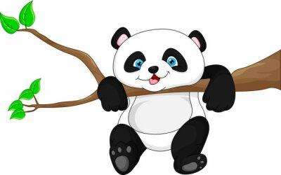 Póster Panda divertida linda del bebé que cuelga en el árbol