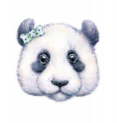 Póster Panda en el fondo blanco. Gráfico de la acuarela. Ilustración infantil. Trabajo hecho a mano