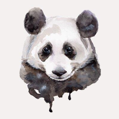 Póster Panda.Watercolor ilustración vectorial