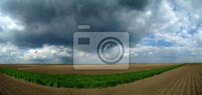 Panorama de trigo de primavera y las tierras de cultivo sobre las nubes de tormenta